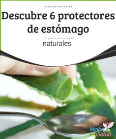 Descubre 6 protectores de estómago naturales La manzanilla es una alternativa natural y muy efectiva para los dolores de estómago y aliviar posibles molestias después de comer. La puedes tomar como remedio o bien para prevenir