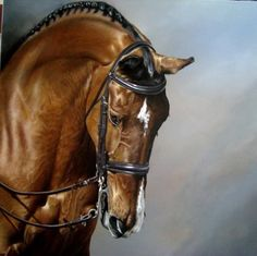 An amazing detailed and realistic rendering of a horse in acrylic and colored pencil piece by Kim Bishop, posted in The Art Colony.