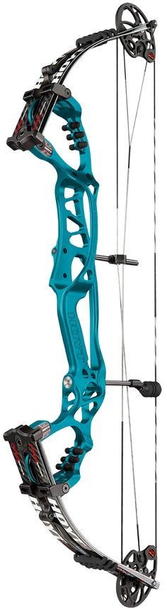 My new bow on order! - Hoyt Pro Comp Elite FX | such a great bow for target shooters.