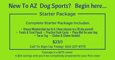 Dog &Puppy training made fun & easy in our large, modern air conditioned Paradise Valley facility! Professional positive training methods for great results! Dog Obedience Classes, Sports Dog, Dog Toys, Booklet, Dog Training, Phoenix, Dogs And Puppies, Dog Training School, Pooch Workout