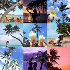 genic_mag : 旅先でヤシの木を見つけると、なんだかテンションが上がってついつい沢山写真を撮ってしまいますよね🌴 .  そんなヤシの木の写真をどんな風に加工したら可愛いかな?と悩んでしまうことも…🙈💭💕 .  そこであなたのGENICなヤシの木写真、  #genic_palmtree を大募集します!  ヤシの木は晴れている時、曇の時、風の吹き方、サンセットなど、シーンによって様々な顔を見せてくれます☺️ . そんなヤシの木と自分を写り込ませた写真はもちろん、 ヤシの木をバックにアイテムやドリンクなどを撮ってみたり、アングルや撮り方のアイディア次第でGENICな写真がたくさん撮れます🙈💕 もちろんお気に入りの風景だけでもOK! . 旅先でヤシの木を見つけたら #genic_palmtree を参考にしてみてくださいね🌴 . あなたのGENICなヤシの木写真に #genic_palmtree と #genic_mag をつけて投稿してください。  GENICインスタグラムまたはGENIC誌面にて紹介させて頂く場合があります。 . photo by…