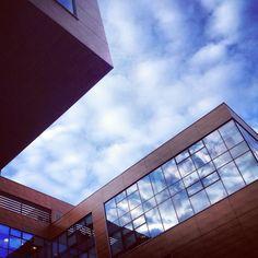 Mscw architecture