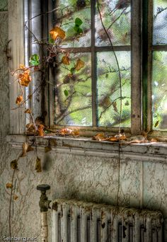 ~The old window……..THIS HOUSE WAS FINALLY ABANDONED AND THE RESIDENTS MOVED TO FLORIDA TO BASK IN THE SUNSHINE AND RIDE THEIR TANDOM BICYCLE……….ccp