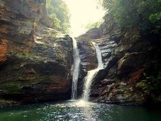 Sri Venkateswara National Park - in Andhra Pradesh, India