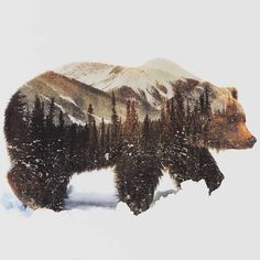 Norwegian artist Andreas Lie has perfectly captured the essence of the arctic in his latest double exposure photographs. Since the beginning, the arti