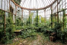 abandoned greenhouse by nicola bertellotti tags abandoned greenhouse ...