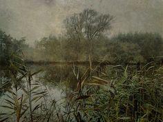 The+lonely+river+II Sarah Jarrett