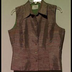 Beautiful silk shirt. Iridescent Great lines. Well made, Asian inspired shirt. Fab buttons. Visions apparel Tops