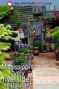 Travel | Mississippi | Attractions | USA | Southern Cooking | Delicious | Food | Dining | Restaurant | Places To Eat | Foodie | Riverside Restaurant | Outdoor Dining | Places To Visit | Day Trips | Bouie River | Waterfront Restaurant | Scenic Dining | Wildlife | Cowboy Jim's | Dinner | Small Towns