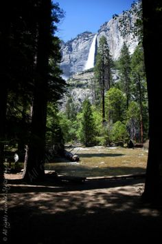 Spend the Weekend Outdoors at Yosemite National Park!