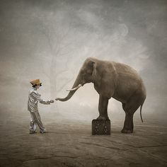 Clown and elephant