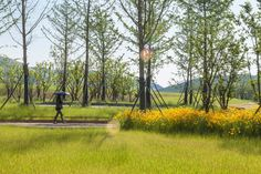 NiushoushanPark_HASSELL_JohnsonLin_08 « Landscape Architecture Works | Landezine