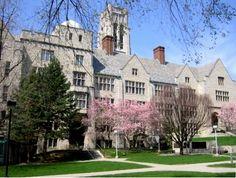 My alma mater - The University of Toledo - Toledo, Ohio