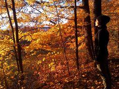 JENNIFER PASTORE on an autumnal walk in Catskills, New York. Photo Sabine Heller