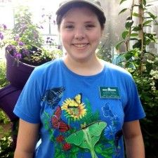 """""""Butterflies LIVE! at Lewis Ginter Botanical Garden offers the sights and sounds of summer all in one package. Where else can you see hundreds of real, live butterflies aflutter?"""" via @RichmondFamilyMag"""