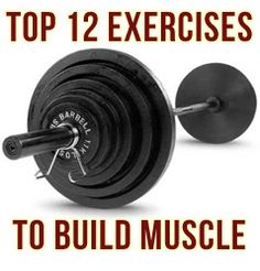 This is an invaluable post for absolutely anyone seeking to gain muscle and strength. I'm going to detail the BEST exercises for each body part. This is based on 2 things: Scientific findings and m...