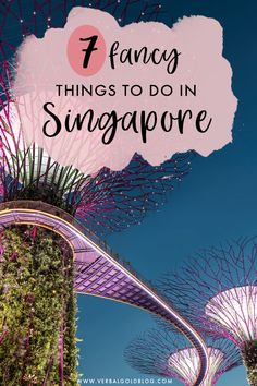 Planning on visiting Singapore and looking for fancy things to do? If you love luxury travel, you'll love this list of your favorite attractions and things to do in Singapore. Singapore Travel Tips, Visit Singapore, Singapore Trip, Hanoi, Vietnam, Thailand, Bhutan, Brunei, Travel Guides