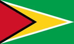 1966, Flag of Guyana #GuyanaFlag #Guyana (L4286)