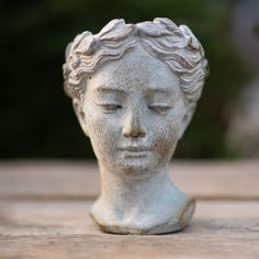 Shipping across Canada - West Coast Gardens - Elegant and full of old-world charm, this Venus bust planter gives you a soft and whimsical indoor or outdoor planter. Succulent Pots, Cacti And Succulents, Planting Succulents, Succulent Ideas, Indoor Ferns, Indoor Plants, Desert Fashion, Desert Homes, Succulents In Containers
