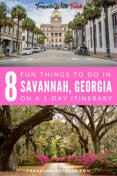 The best things to do on a day trip to Savannah are to absorb the historic atmosphere, sample southern cuisine and stroll around Bonaventure Cemetery. Usa Travel Guide, Travel Usa, Travel Guides, Travel Tips, Travelling Tips, Budget Travel, Savannah Georgia, Savannah Chat, Savannah Restaurants