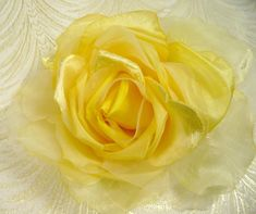 "A show-stopper rose fit for the bridal party! Gorgeous silk and velvet petals in sweet sunny yellow that measures approx. 8"" across - perfect for a sash, hat, fascinator, or wedding arrangement. Would also be a terrific accent piece for a vintage display to set a shabby chic mood. It is so soft and feminine - I know you'll adore this beautiful millinery rose! Highest quality for a very special lady!  All millinery items from my shop are shipped in a box to prevent crushing. Please re..."