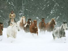 Rugged Montana cowhands during the cold winter months!  Clean air and good living!