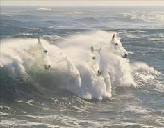 In Irish legend, the white crested waves of the sea are poetically called the horses of Manannán mac Lir, an Irish sea deity and the guardian between worlds.