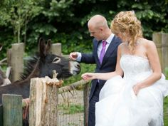 Defend the Trend: Donkeys at Weddings, Yay or Bray? (http://blog.hgtv.com/design/2014/06/20/donkey-wedding-trend/?soc=pinterest)