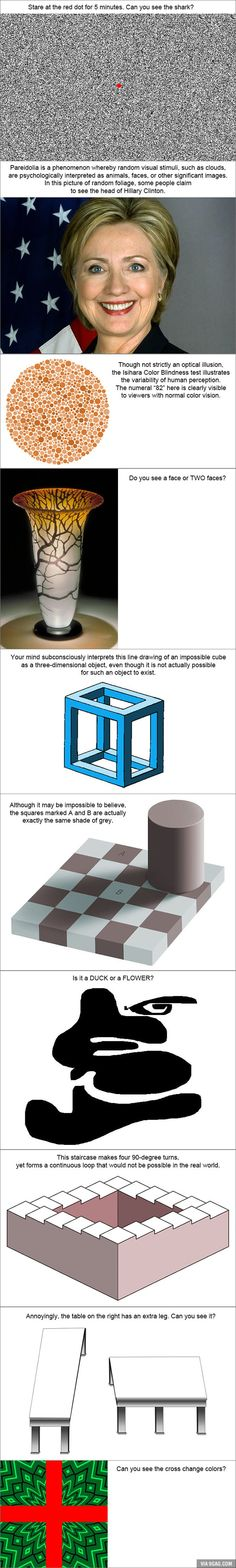 Top 10 Greatest Optical Illusions Ever