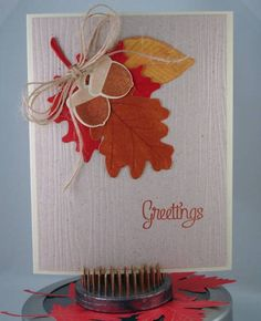 CC343 Thanksgiving Greetings by Cindy H. - Cards and Paper Crafts at Splitcoaststampers