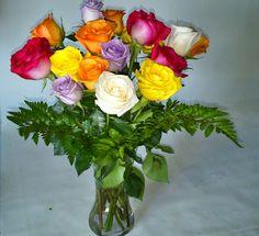 Docena de rosas de colores para regalar