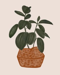 Potted Plant by Nancy Noreth on Artfully Walls