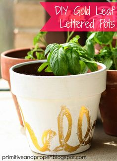 Gold Leaf Lettered Flower Pots