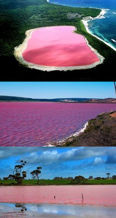 The Pink Lake Hillier Of Australia Yes please!
