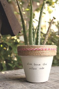 This listing is for one 4 hand decorated terracotta pot with the lyric from Adeles Aloe Hooray puns! These pots are a perfect addition to your home, office, friends house, mothers kitchen or anywhere you can put a pun on it! Brighten your day and windowsill with these hand decorated pots made out of a home workshop in East Los Angeles. » Pot does not include plant » The height and diameter of the pot are 4 inches » All pots are sealed with an earth safe finish for safe growth of all edible…