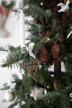 Smukt smalt træ med naturlige kogler