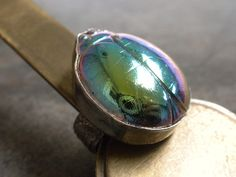 Statement Ring Scarab Jewelry Silver Ring Size 7.5 by Serrelynda