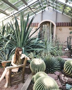 Summer Adventures for Cacti And Succulents, Cactus Plants, Indoor Cactus, Cactus Art, Succulent Landscaping, Craftsman Exterior, Kodak Moment, Agaves, Botanical Gardens