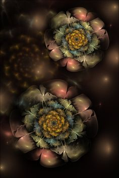 Floral dreams by *FractalDesire