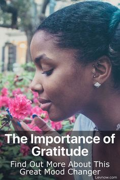 Importance of Gratitude: Gratitude is the fastest, and best mood changer on the planet. Gratitude will change your mood within minutes. Click to read more or pin and save it for later!