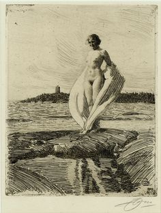 Print of the Day!! Tuesday, April 4, 2017     Swedish printmaker Anders Zorn (1860-1920); The Swan (Svanen); etching; 1915.