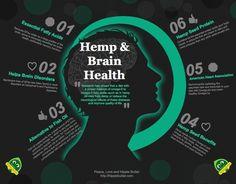 Can Hemp Be Healthy? Experts Say Hemp Oil May Help in the Treatment of Alzheimer's ~ Hemp Oil is Brain Food