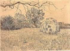 Van Gogh - Public Garden