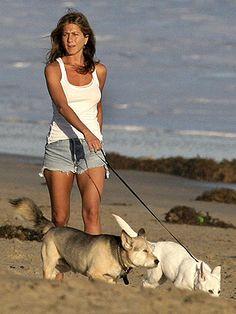 Nice 21 Celebrity Pet Owners Who Treat Their Furry Friends like Kids Jennifer Aniston Horrible Bosses, Jennifer Aniston Style, Big Animals, Happy Animals, Celebrity Dogs, Dog Walking, Dog Owners, My Idol, Corgi