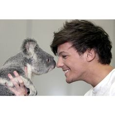 One Direction's Harry Styles and Liam Payne told the koala they... ❤ liked on Polyvore