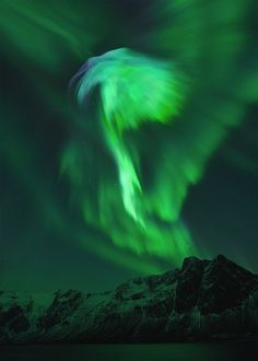 Spectacular images of the auroras taken in Jan 2012. Various photographers.