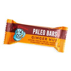 Blue Dinosaur PALEO Bars - GINGER NUT