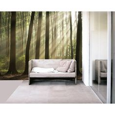 MISTY FOREST Paste the Wall Mural by Brewster 99084