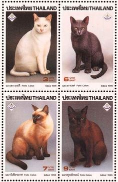 A Tonks Tail... err, Tale...: Fun Finds Friday: Cat Stamps