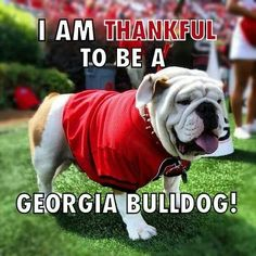 Its great to be a Georgia Bulldog! I'm thankful they won against clemson last night 45-21. This is what its like to be in the dawg pound!!!